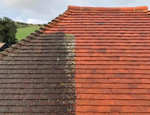 roof moss removal in East Sussex